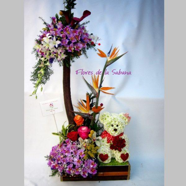 regalar arreglos de orquideas bogota